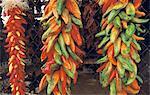 United States, Arizona, Sedona, peppers