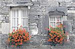 France, Brittany, Flowered windows