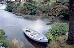 Ireland, Lake region