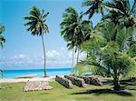 Takapoto, archipel des Tuamotu, Polynésie française
