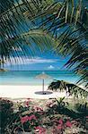Ile Maurice, Trou-aux-biches, vue sur la mer
