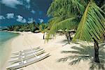 Polynésie française, îles de la société, l'île de Bora Bora, plage
