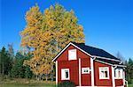 Finland, Lapland, Luosto vicinity