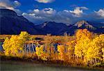 Waterton-Lakes-Nationalpark, Alberta, Kanada