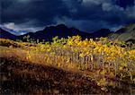 Herbst Scenic Alberta, Kanada