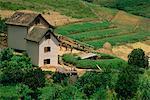 Farm House and Rice Field Madagascar