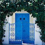 Portail tunisien Sidi Bou Saïd, Tunisie, Afrique