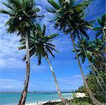 Playa Bonita, Halbinsel Samaná Dominikanische Republik