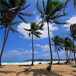 Punta Macao, die Ostküste Dominikanische Republik