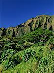 Hoomaluhia Botanical Gardens Koolau Mountain Range Oahu, Hawaii USA