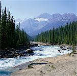 Canyon Mistaya, Parc National Banff, Alberta, Canada