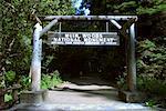 Muir Woods National Monument California, USA