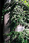 Résidence universitaire, Université de Toronto, Toronto, Ontario, Canada