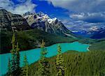 Mount Patterson, Peyto Lake, Banff National Park, Alberta, Canada