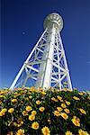 Lighthouse over Wildflowers, Currie, King Island, Tasmania, Australia