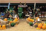 Country Store, Bolton Landing, Lake George, Adirondack Park, New York State, USA