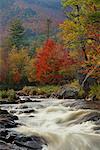 Rapides de la rivière dans la rivière Ausable Forest, parc des Adirondacks, New York State, États-Unis