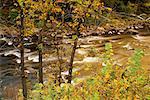 Rapides, la rivière Ausable, West Branch, parc des Adirondacks, New York, USA