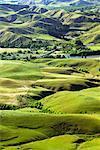 Farmland and the Tukituki Hills, Hawke's Bay, New Zealand