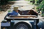 Mensch und Hund in Oldtimer