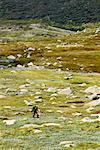 Person Hiking on Mount Twynam, Kosciuszko National Park, New South Wales, Australia