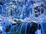 Tangle Creek Falls, Parc National Jasper, Alberta, Canada