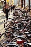 Ligne de bicyclettes, Tokyo, Japon