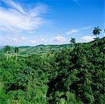 Escambray Sierra, Cuba