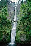 Multnomah Falls and Bridge, Columbia River Gorge, Oregon, USA