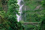 Bridge and Multnomah Falls, Columbia River Gorge, Oregon, USA