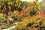 Huntington Botanical Garden, Pasadena, Kalifornien, USA