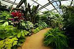 Gewächshaus, Los Angeles County Arboretum und Botanischer Garten, Arcadia, Kalifornien, USA