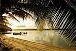 Aore Island Resort, Espiritu Santo, Vanuatu