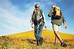 Couple de randonnée à travers les fleurs sauvages