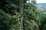 Man Crossing Elevated Footbridge in Forest, Cagayan de Oro, Mindanao, Philippines