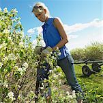 Woman Gardening, Alberta, Canada