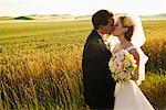 Mariée et le marié baiser par champ, Idaho, États-Unis