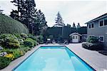 Swimming Pool and Backyard