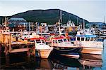 Fishing Harbour, Husavik, Iceland