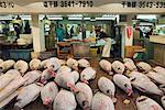 Thon congelé, marché aux poissons de Tsukiki, Tokyo, Japon