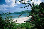 Beach, Mahe Island, Seychelles