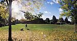 Personne au parc avec chien