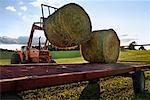 Loading Hay onto Flatbed