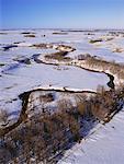 Rivière souris en hiver, Manitoba, Canada