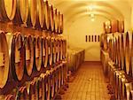barrels of wine in a cellar