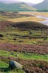 Braemar Aberdeenshire, en Écosse, paysage Grampians