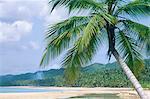 République dominicaine, Las Terranas, plage déserte