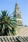 Spain, Andalusia, Cordoba, belfry-minaret of the Mezquita