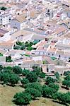 Espagne, Andalousie, près de Cordoba, Almodovar del Rio