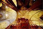 Cathédrale d'Andalousie, Séville, Espagne.